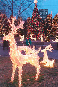 tacky lights tour richmond va